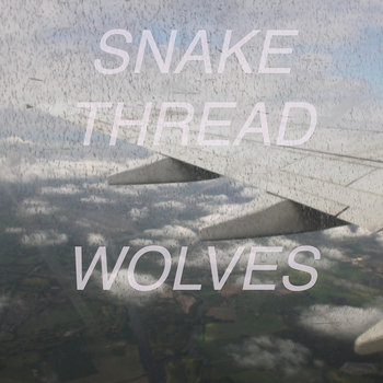 Wolves cover art