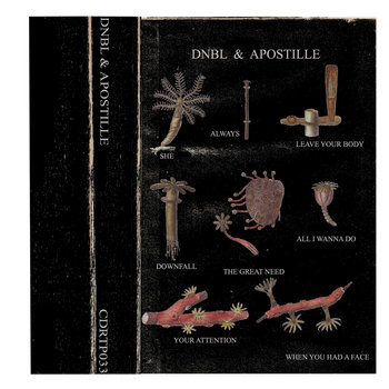 "Apostille Side from ""Dnbl & Apostille"" 2013 cover art"