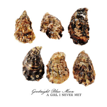 A Girl I Never Met cover art