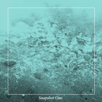 Snapshot One cover art