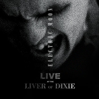 Live at the Liver of Dixie cover art