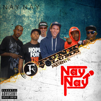 Funk Volume Presents: Nay Nay cover art