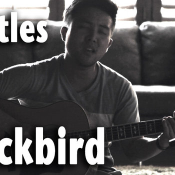Beatles - Blackbird - David Choi Cover cover art