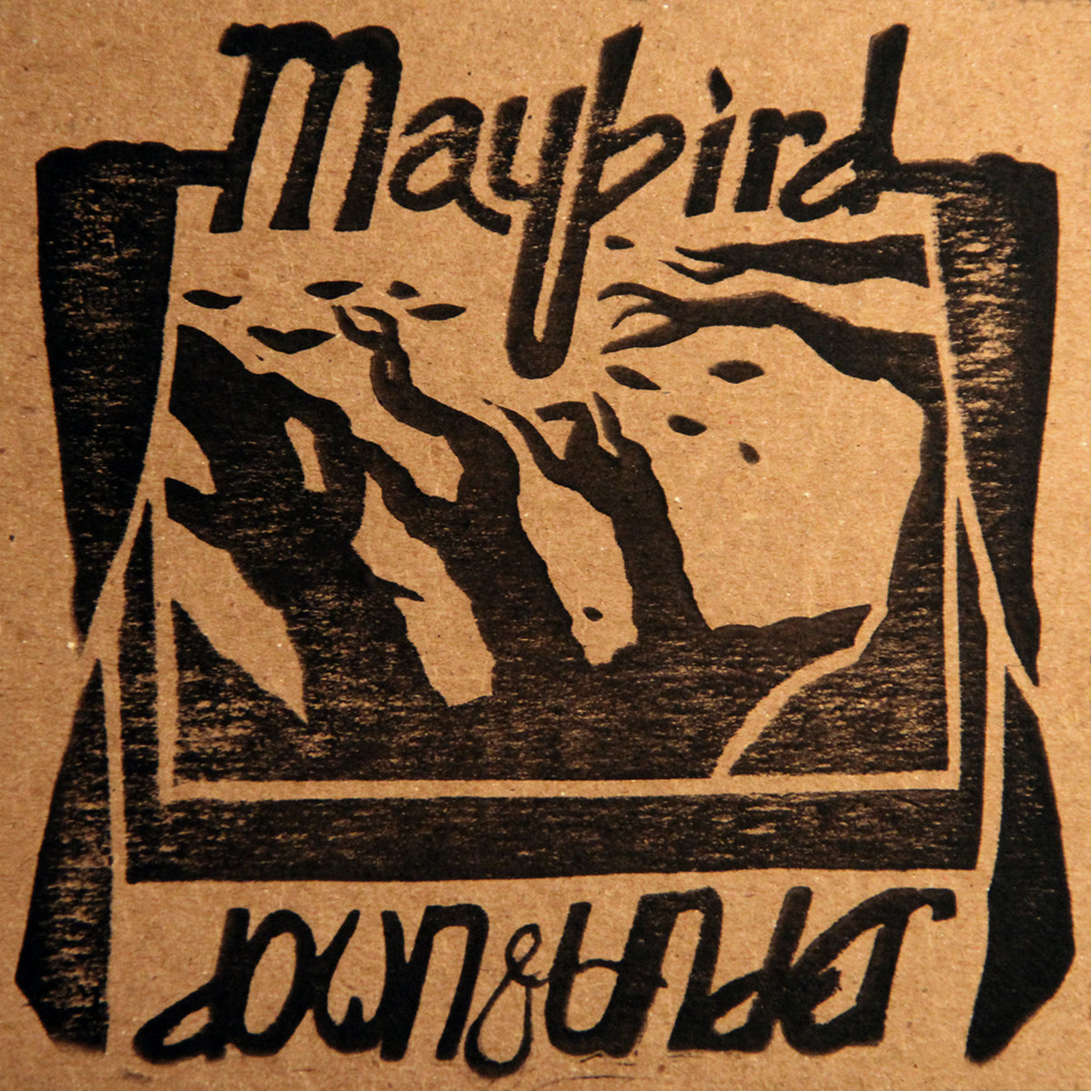 maybird down and under