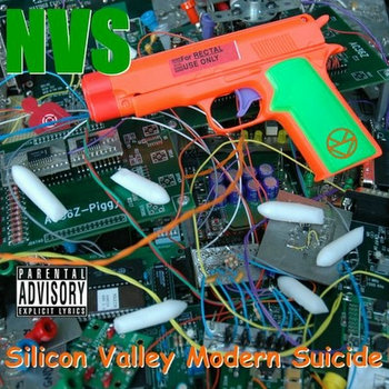 Silicon Valley Modern Suicide cover art