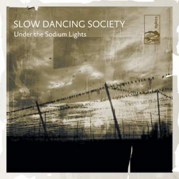 Under The Sodium Lights cover art