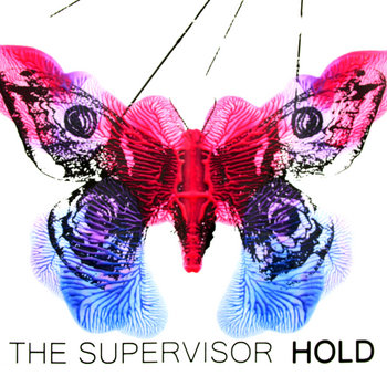 Hold cover art