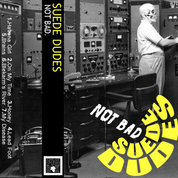 Not Bad. (Suede Dudes/ Bonnet People split) cover art