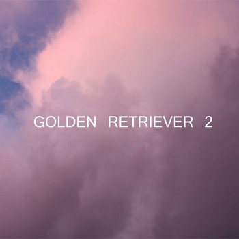 Golden Retriever 2 cover art