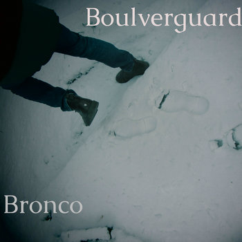 Bronco cover art