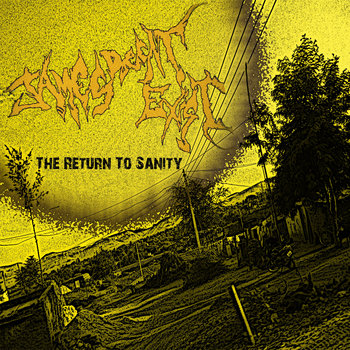 The Return To Sanity cover art