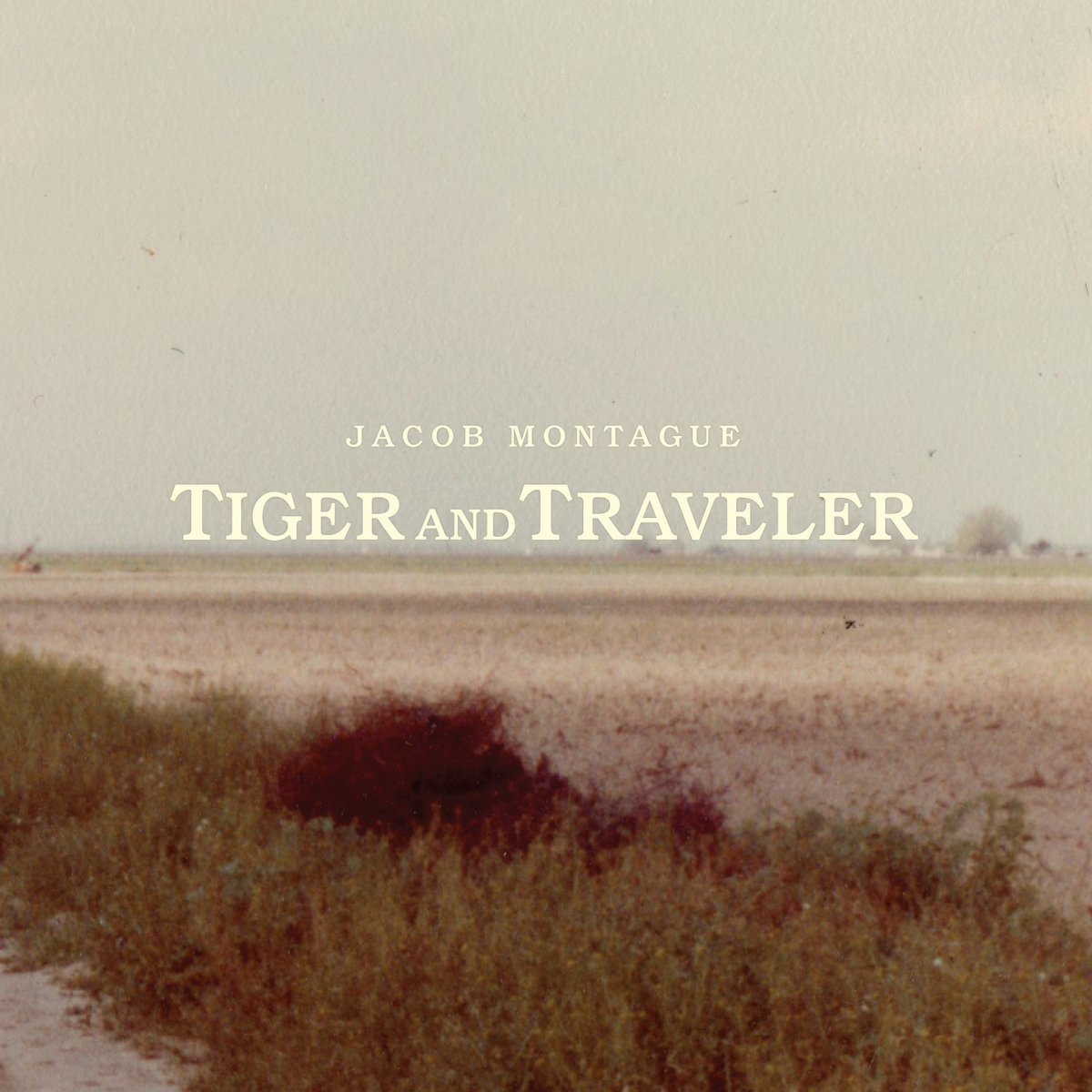 tiger and traveler jacob montague