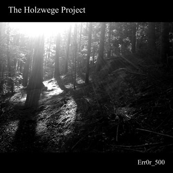 The Holzwege Project cover art