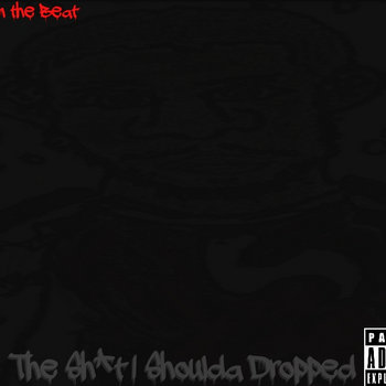 The Sh*t I Shoulda Dropped cover art