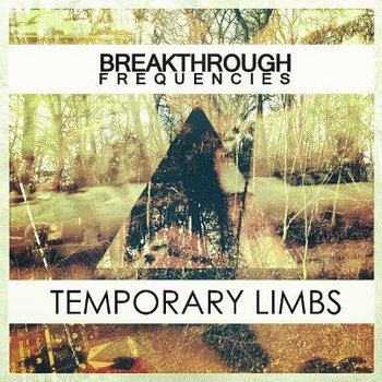 Temporary Limbs cover art