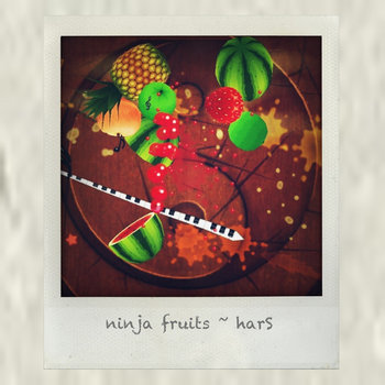 Ninja Fruits cover art
