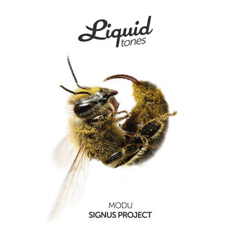 Signus Project cover art