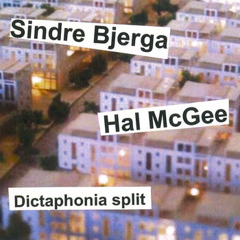 Dictaphonia split #6 cover art
