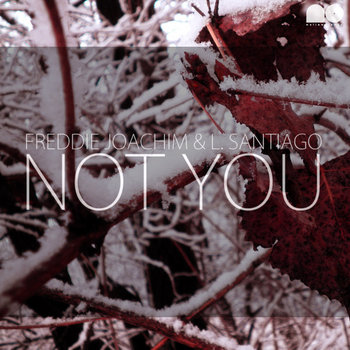 Not You cover art