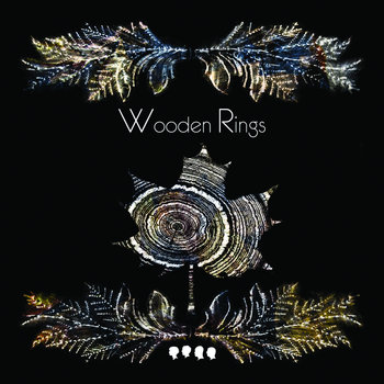 Wooden Rings cover art