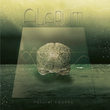 Natural Causes cover art
