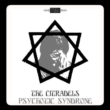 Psychotic Syndrone cover art