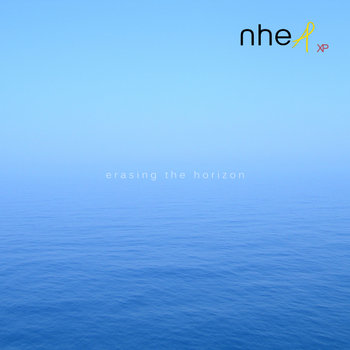 Erasing the horizon cover art
