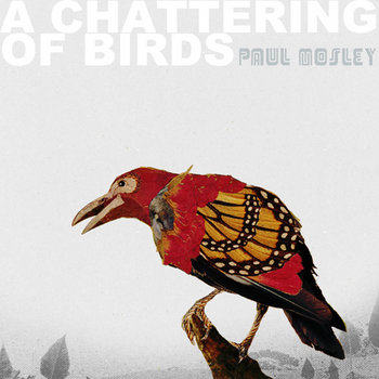 A Chattering of Birds cover art