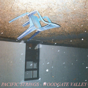 WOODGATE VALLEY cover art