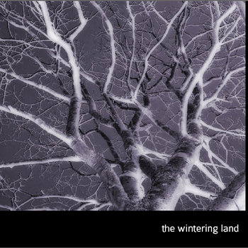 The Wintering Land cover art