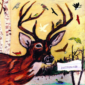 Passerine cover art