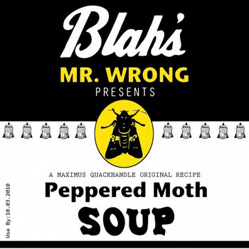 Peppered Moth Soup cover art
