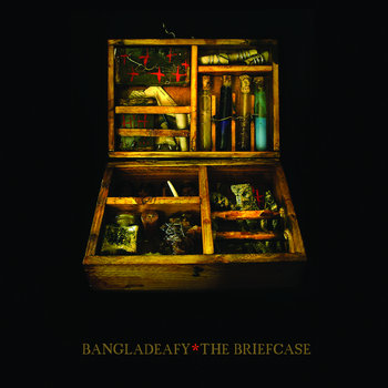 The Briefcase cover art
