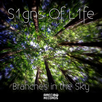 Branches in the Sky cover art