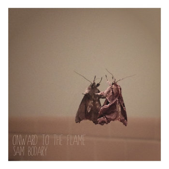 Onward to the Flame cover art