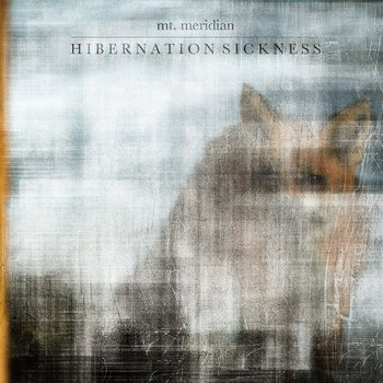 Hibernation Sickness cover art
