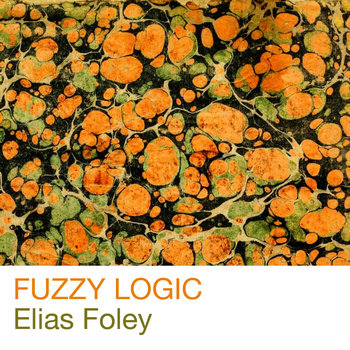 Fuzzy Logic cover art