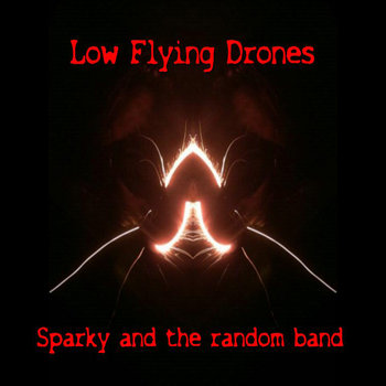 Low Flying Drones cover art