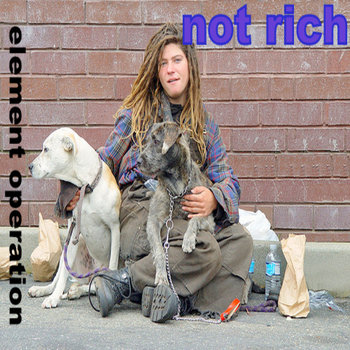 Element Operation - Not rich cover art