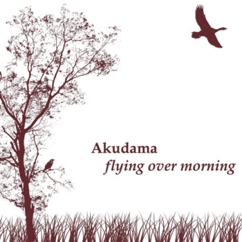 Flying Over Morning cover art