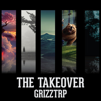 The Takeover cover art