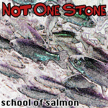 School of Salmon cover art