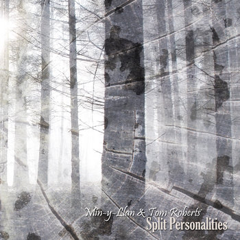 Split Personalities cover art