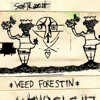 Weed Forestin' cover art