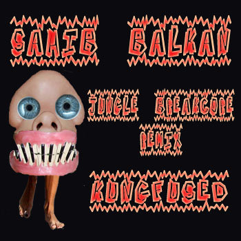 SAHIB BALKAN (Jungle Breakcore Remix) cover art