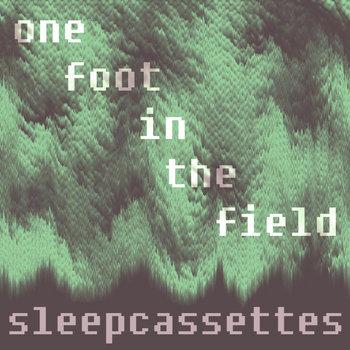 one foot in the field cover art
