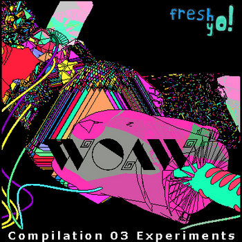 FY! 003 - wOAw compilation 03 Experiments cover art
