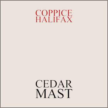Cedar Mast cover art