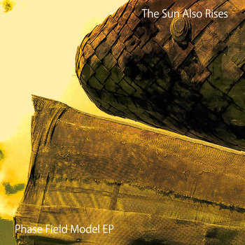 Phase Field Model cover art