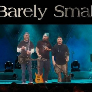 Barely Small IV cover art